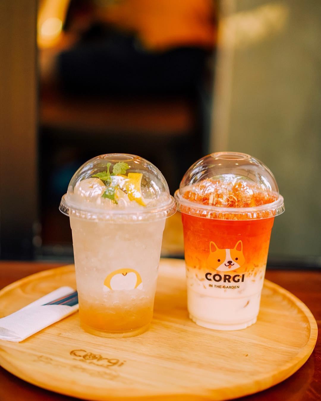 Siêu cấp dễ thương: Quán cà phê chó corgi nổi tiếng nhất Bangkok khiến dân tình phát sốt, con nào con nấy cũng ú nu ú nần - Ảnh 5.