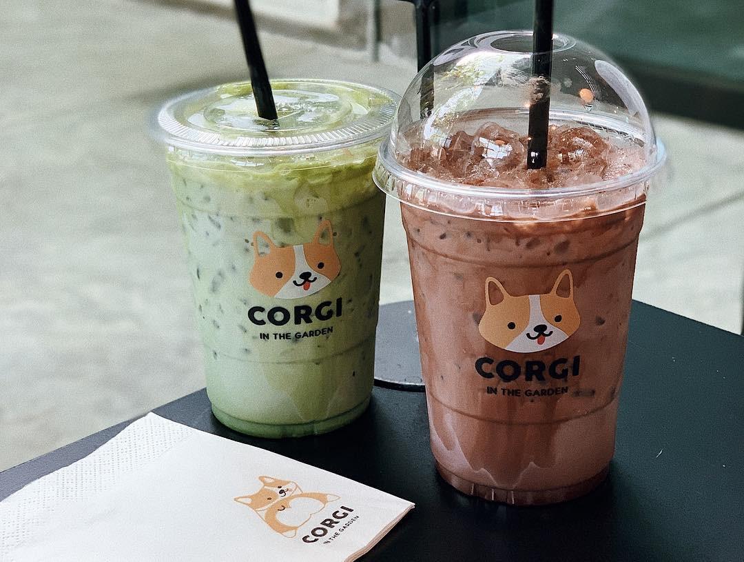 Siêu cấp dễ thương: Quán cà phê chó corgi nổi tiếng nhất Bangkok khiến dân tình phát sốt, con nào con nấy cũng ú nu ú nần - Ảnh 6.