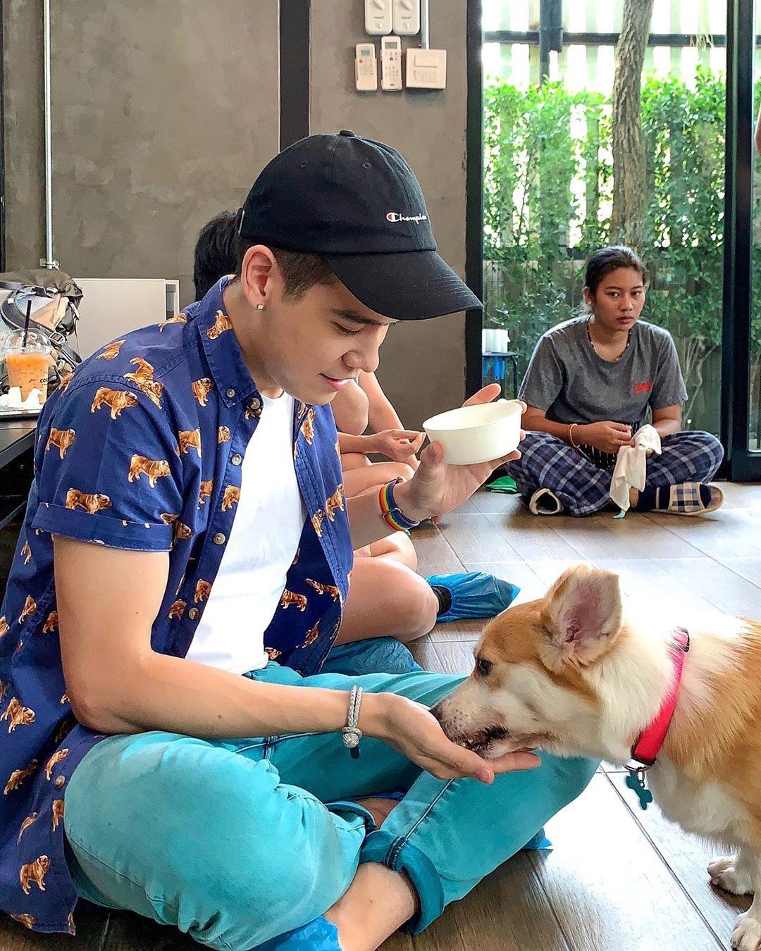 Siêu cấp dễ thương: Quán cà phê chó corgi nổi tiếng nhất Bangkok khiến dân tình phát sốt, con nào con nấy cũng ú nu ú nần - Ảnh 20.