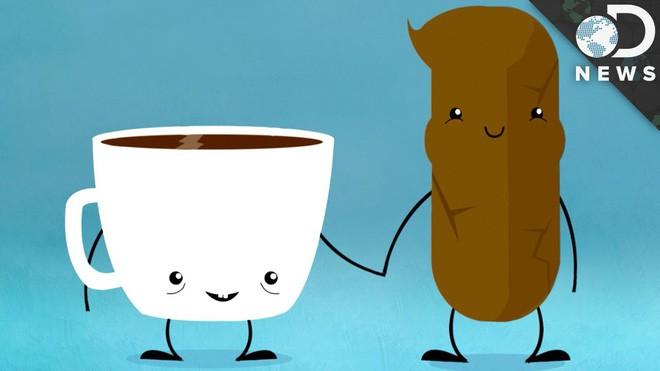 Cứ 3 người uống cà phê thì có 1 người buồn đại tiện: Tại sao lại vậy? - Ảnh 2.