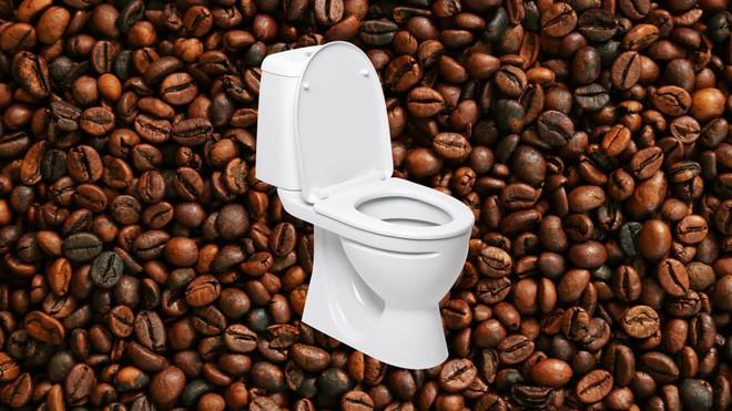 Cứ 3 người uống cà phê thì có 1 người buồn đại tiện: Tại sao lại vậy? - Ảnh 3.