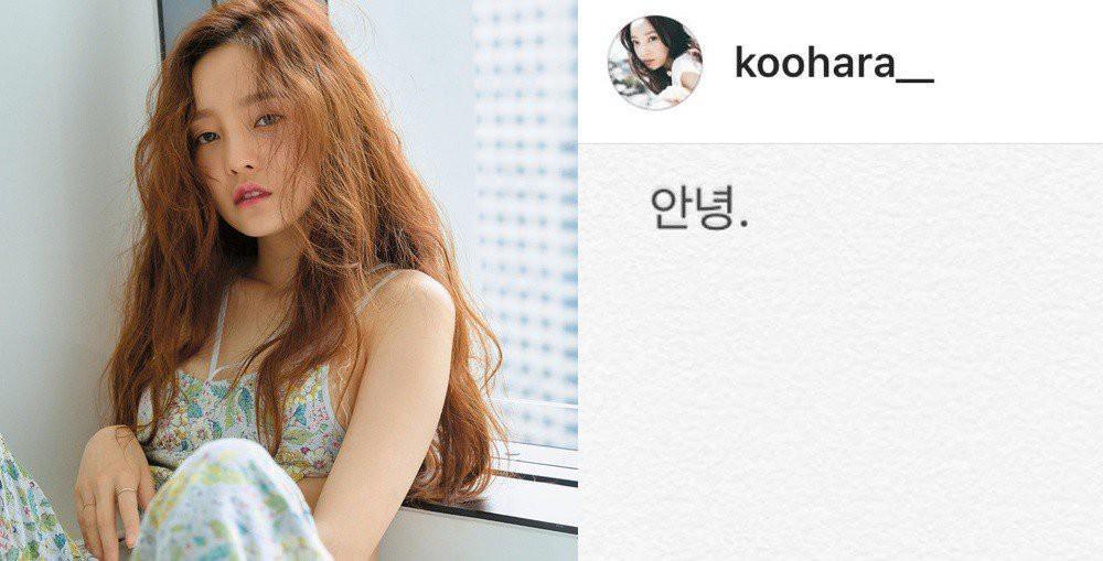 Sốc: Nữ idol đình đám Goo Hara cố tự tử tại nhà riêng, để lại lời nhắn Tạm biệt fan trên Instagram - Ảnh 1.