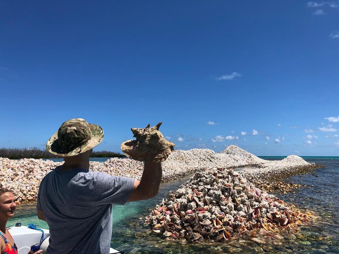 Hoá ra, hòn đảo ăn ốc đổ vỏ là có thật: Mới nhìn hình thôi mà đã thấy nhức chân lắm rồi! - Ảnh 10.