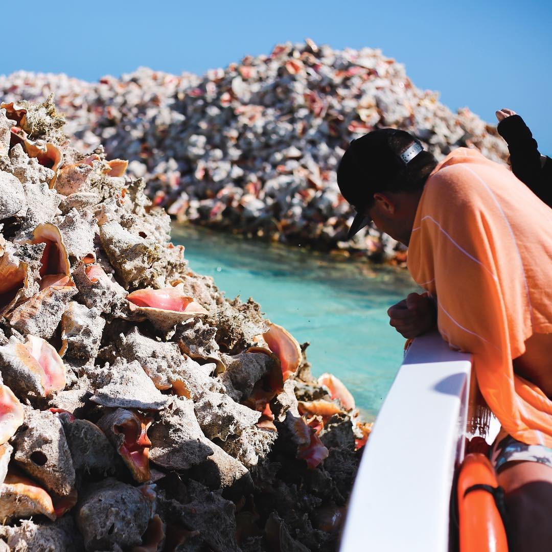 Hoá ra, hòn đảo ăn ốc đổ vỏ là có thật: Mới nhìn hình thôi mà đã thấy nhức chân lắm rồi! - Ảnh 2.