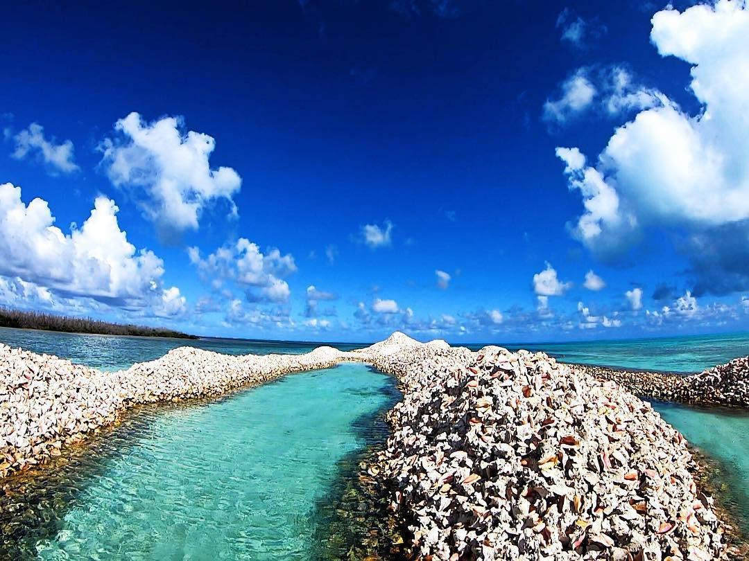 Hoá ra, hòn đảo ăn ốc đổ vỏ là có thật: Mới nhìn hình thôi mà đã thấy nhức chân lắm rồi! - Ảnh 14.