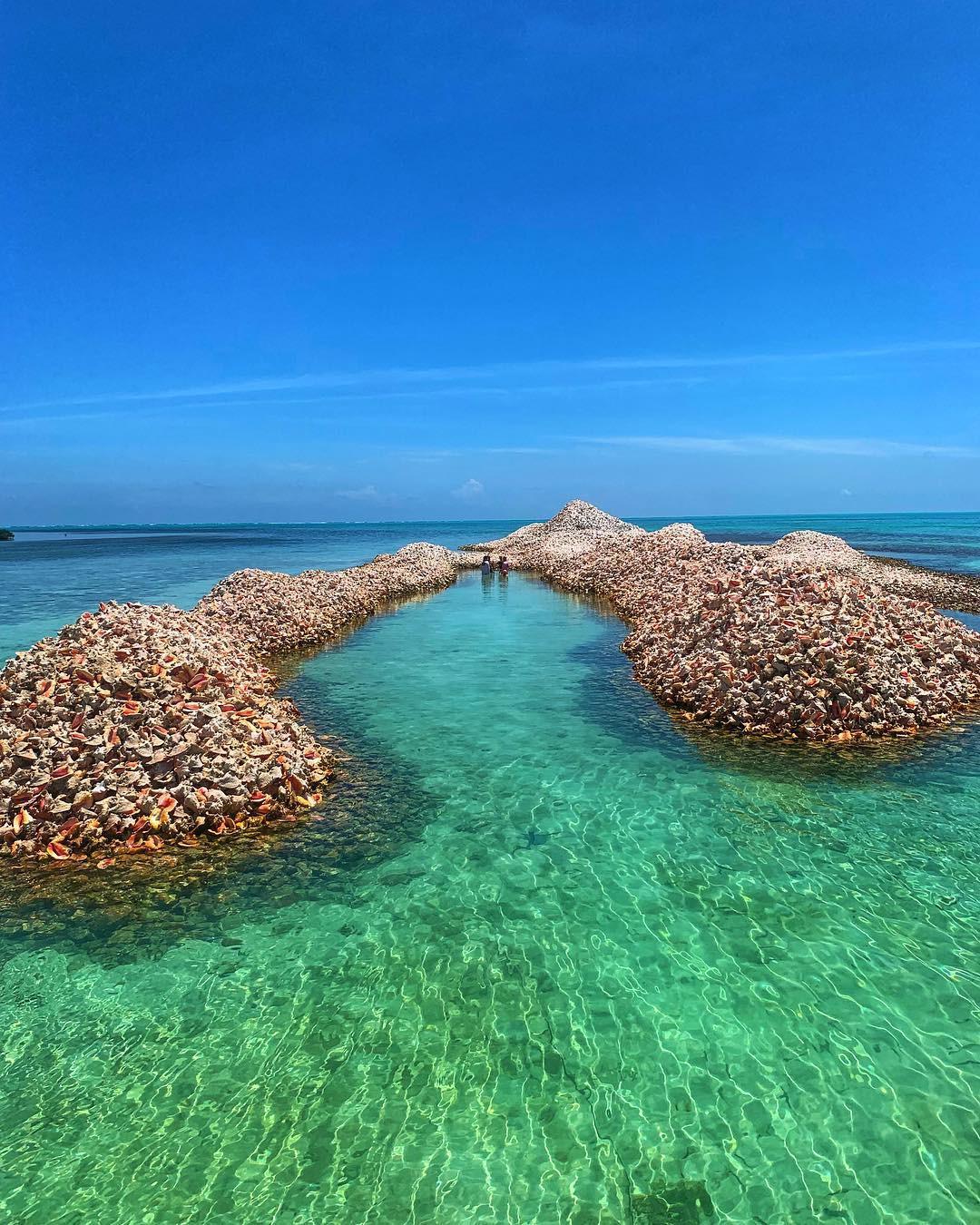 Hoá ra, hòn đảo ăn ốc đổ vỏ là có thật: Mới nhìn hình thôi mà đã thấy nhức chân lắm rồi! - Ảnh 7.