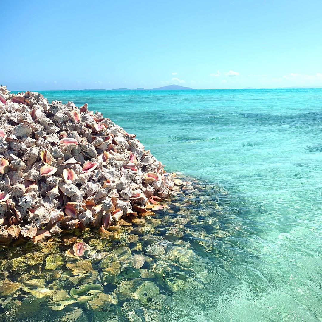 Hoá ra, hòn đảo ăn ốc đổ vỏ là có thật: Mới nhìn hình thôi mà đã thấy nhức chân lắm rồi! - Ảnh 15.