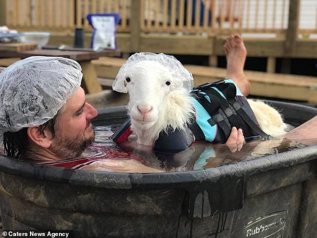 Cưu mang chú cừu khuyết tật hết 900 triệu, đôi trẻ phải hoãn ngày cưới vì bị vét sạch cả tiền lẫn thời gian - Ảnh 4.