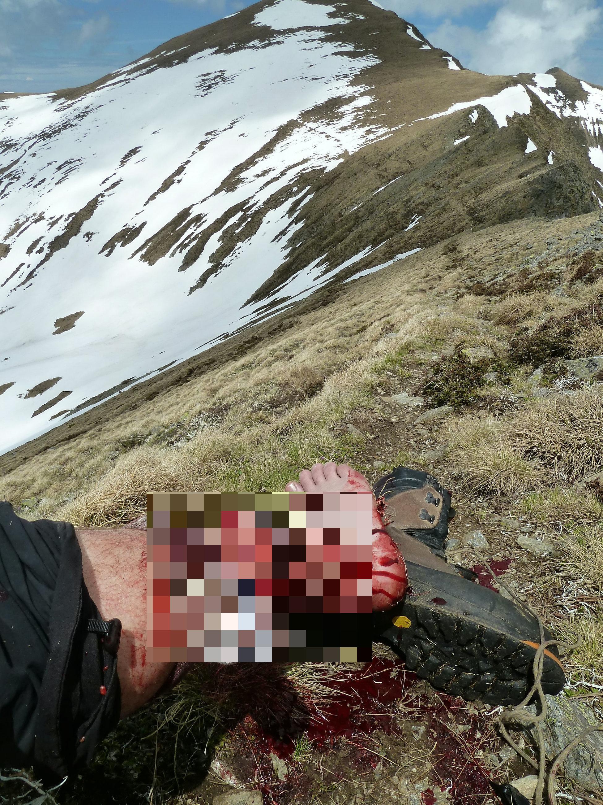 Đang đi chơi với gấu thì bị gấu tấn công, thanh niên đấm nó không trượt phát nào - Ảnh 2.
