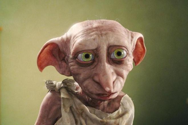 Sinh vật kỳ quái giống Dobby trong Harry Potter đang khiến internet hoảng loạn - Ảnh 3.