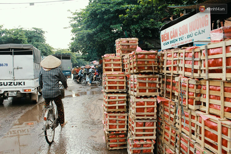 Chùm ảnh: Người dân Bắc Giang ùn ùn đi bán vải, đường phố ùn tắc hàng km - Ảnh 12.