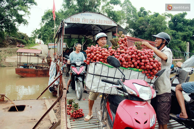 Chùm ảnh: Người dân Bắc Giang ùn ùn đi bán vải, đường phố ùn tắc hàng km - Ảnh 5.