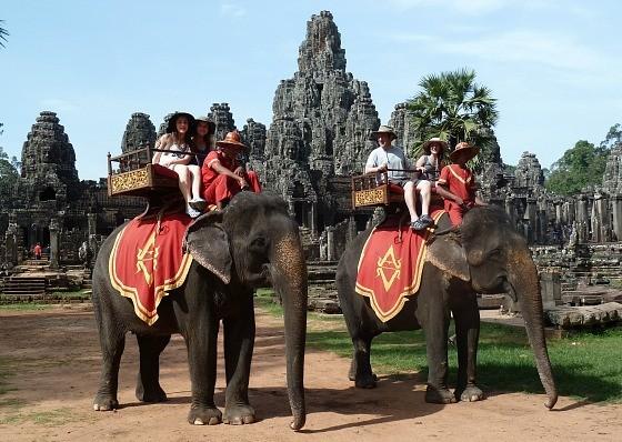 Ãm ảnh nạn bóc lá»t Äá»ng vật dã man, chính phủ Campuchia cấm hẳn dá»ch vụ cưỡi voi á» Angkor Wat từ nÄm 2020 - Ảnh 4.