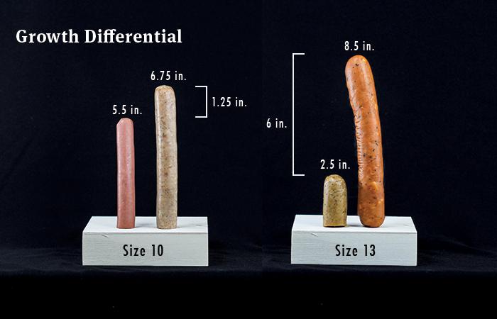 Có phải chân càng to thì cậu nhỏ cũng to? Đây là lời giải cho thắc mắc kinh điển của cánh đàn ông trên thế giới - Ảnh 2.