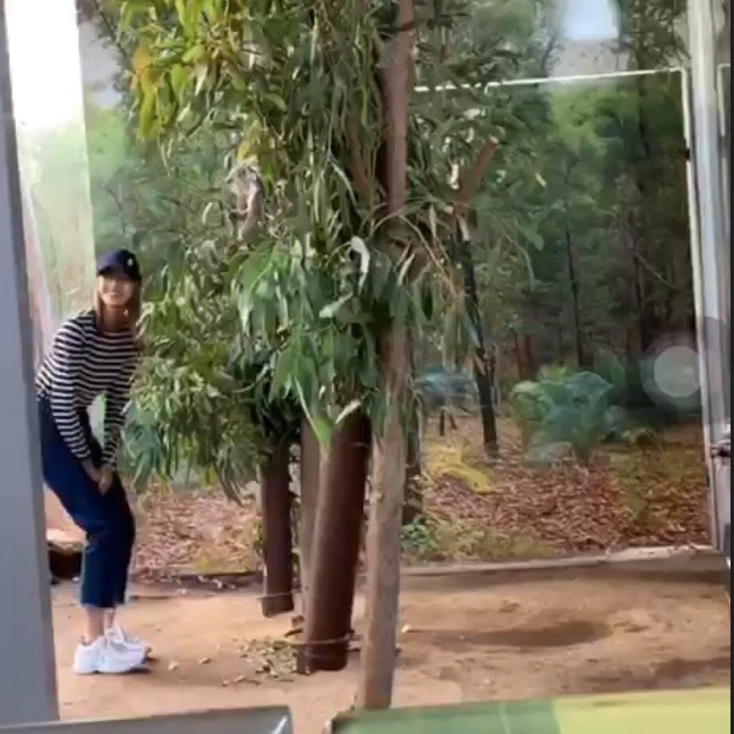 YG mất đầu tàu có làm BLACKPINK lo lắng: Vẫn đi shopping, chơi ở sở thú và quậy concert cực vui - Ảnh 5.