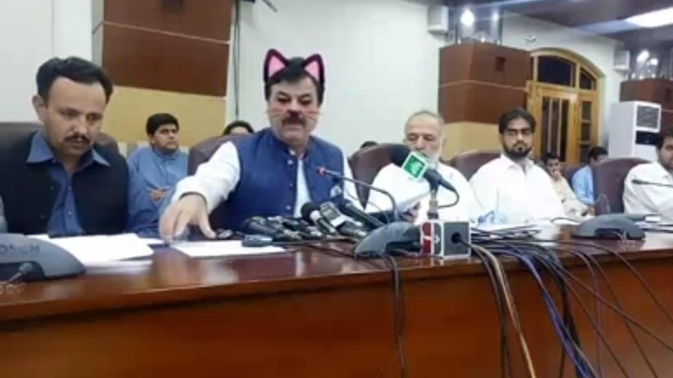 Livestream họp báo mà quên tắt filter mèo cute, quan chức Pakistan gây xôn xao MXH quốc tế - Ảnh 1.