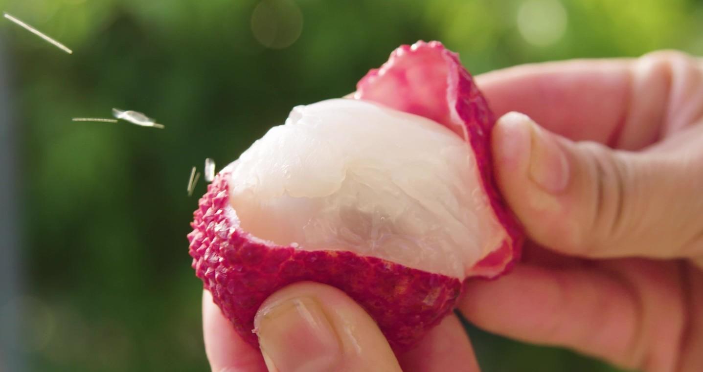 Có gì đặc biệt ở giống vải thiều Nhật Bản đắt nhất thế giới? 240 nghìn đồng mới mua được 1 quả, ăn một lần nhớ cả đời - Ảnh 5.