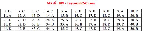 Đáp án đề thi THPT quốc gia 2019 môn Toán (tất cả 24 mã đề) - Ảnh 4.