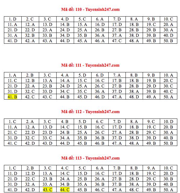 Đáp án đề thi THPT quốc gia 2019 môn Toán (tất cả 24 mã đề) - Ảnh 5.