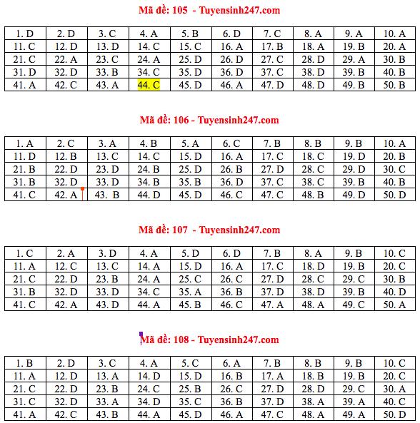 Đáp án đề thi THPT quốc gia 2019 môn Toán (tất cả 24 mã đề) - Ảnh 3.