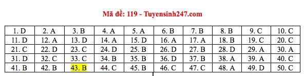 Đáp án đề thi THPT quốc gia 2019 môn Toán (tất cả 24 mã đề) - Ảnh 7.
