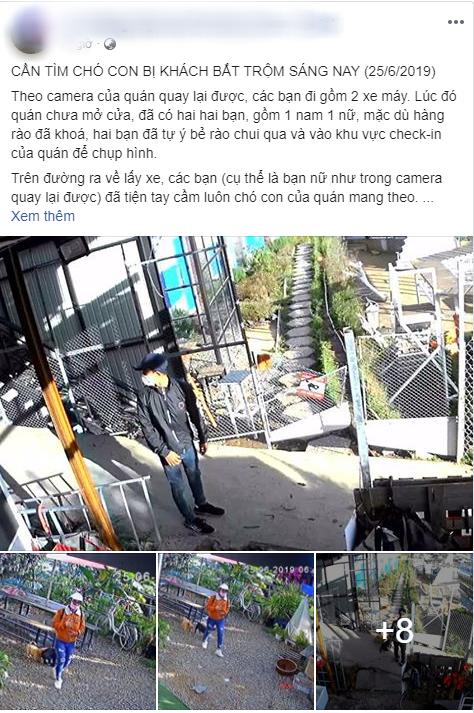Đôi nam nữ bị tố bê trộm chó sau khi tự ý chui qua hàng rào vào quán cafe Đà Lạt chụp ảnh dù chưa đến giờ mở cửa - Ảnh 1.