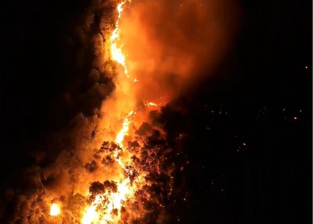 Cháy rừng kinh hoàng ở Hà Tĩnh đe doạ nhiều nhà dân, hàng trăm người nỗ lực dập lửa gần 10 tiếng đồng hồ - Ảnh 2.