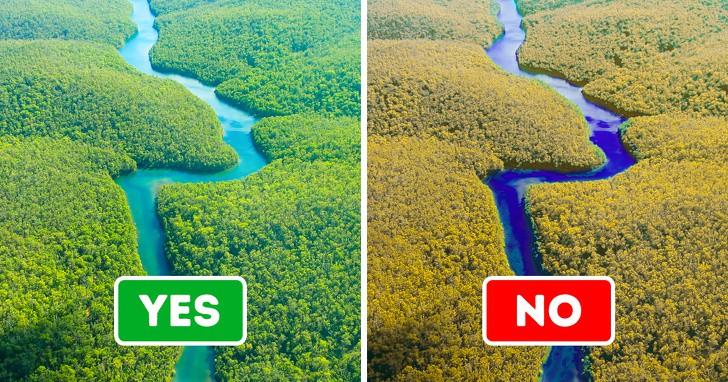 Những thổ dân Amazon vừa chặn được tập đoàn dầu mỏ khổng lồ đến phá rừng: Nguồn cảm hứng bảo vệ môi trường lan tỏa khắp Nam Mỹ - Ảnh 2.