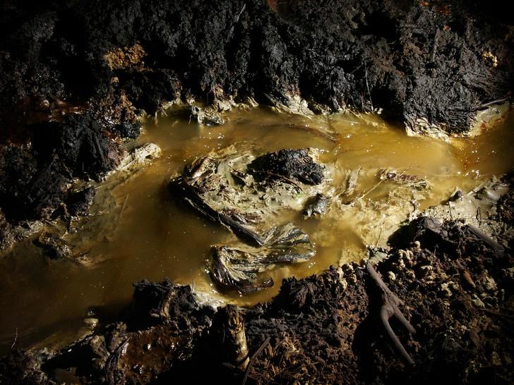 Những thổ dân Amazon vừa chặn được tập đoàn dầu mỏ khổng lồ đến phá rừng: Nguồn cảm hứng bảo vệ môi trường lan tỏa khắp Nam Mỹ - Ảnh 3.