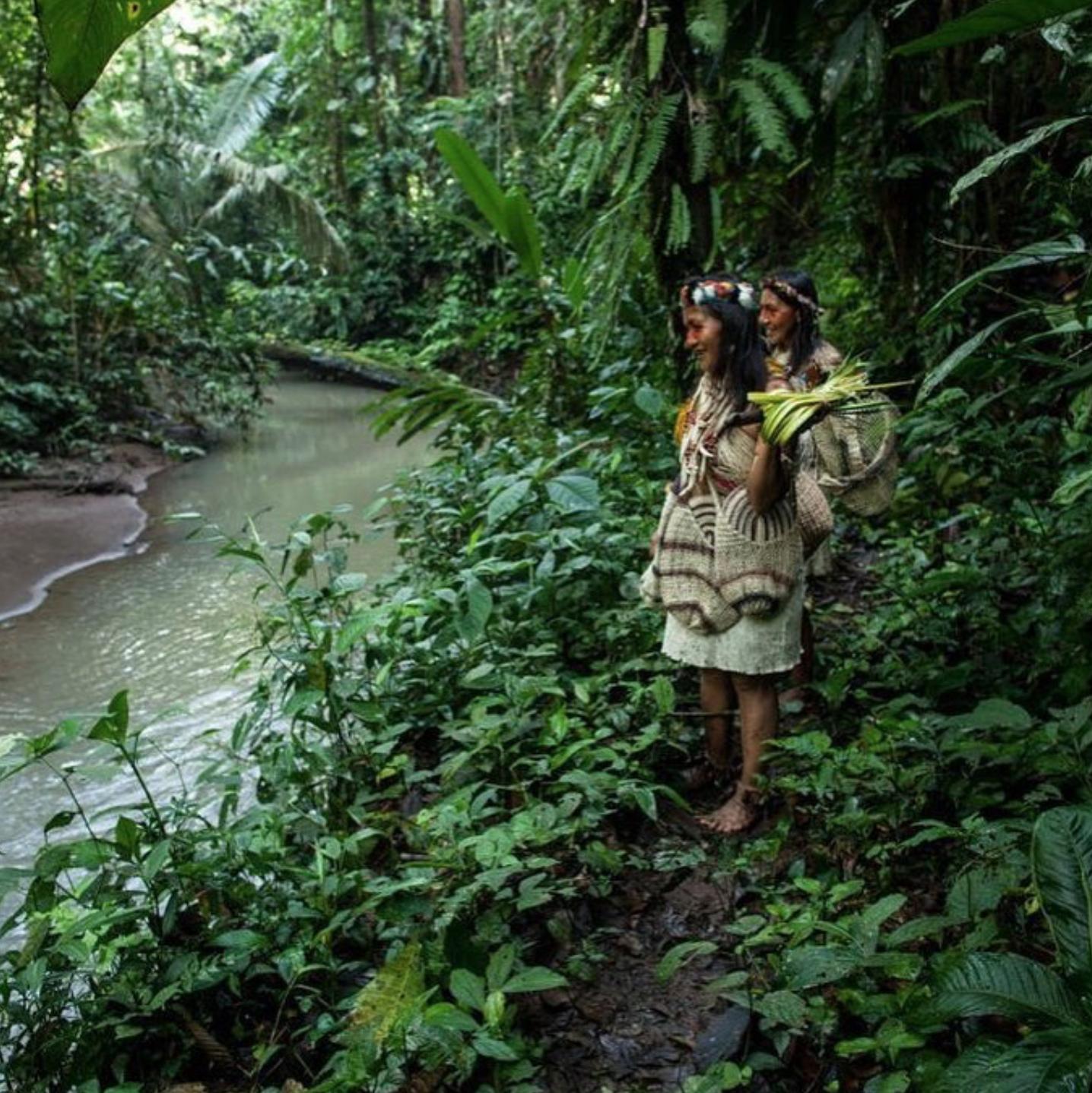 Những thổ dân Amazon vừa chặn được tập đoàn dầu mỏ khổng lồ đến phá rừng: Nguồn cảm hứng bảo vệ môi trường lan tỏa khắp Nam Mỹ - Ảnh 1.