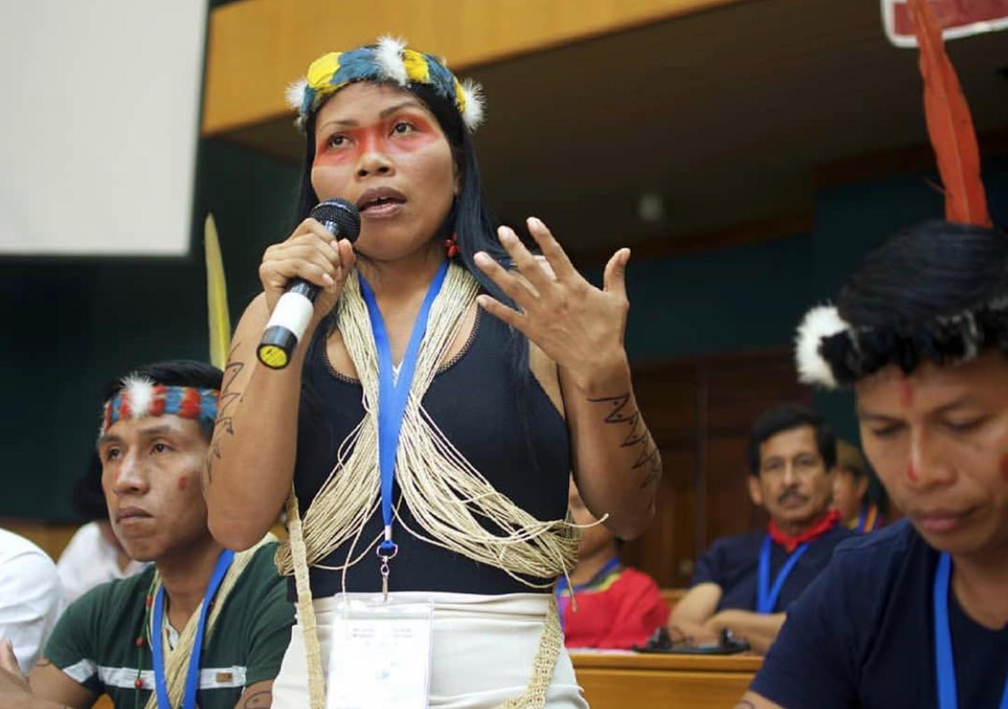 Những thổ dân Amazon vừa chặn được tập đoàn dầu mỏ khổng lồ đến phá rừng: Nguồn cảm hứng bảo vệ môi trường lan tỏa khắp Nam Mỹ - Ảnh 5.