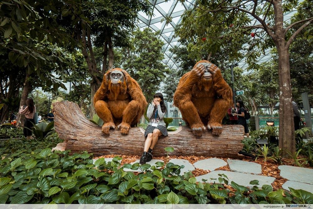 Chất lừ với Apple Store thứ 2 ở Singapore: Đặt ở sân bay mà cứ ngỡ lạc vào rừng tiên trong phim ảnh - Ảnh 6.