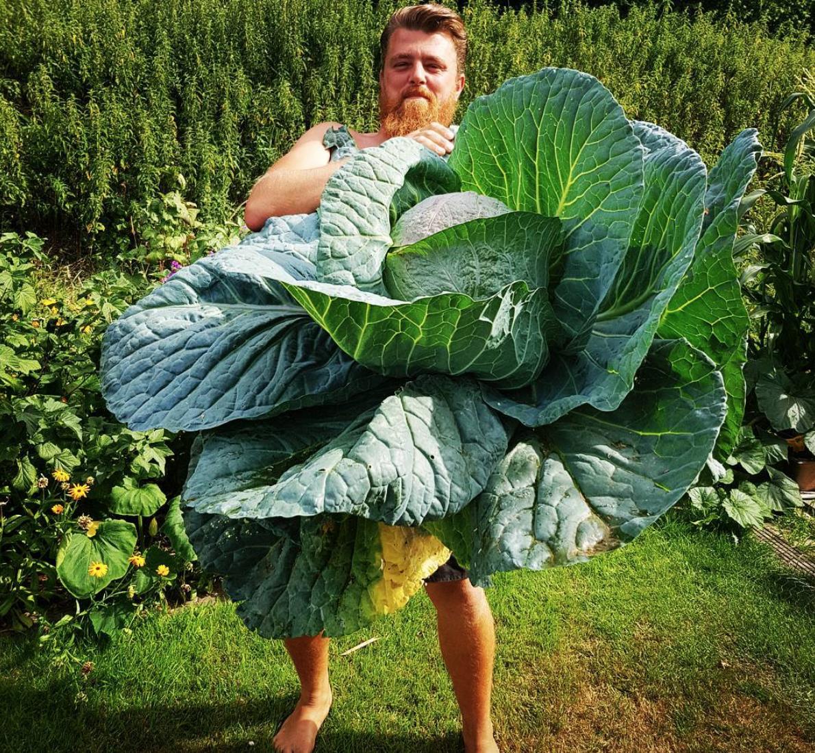 15 loại rau củ khó nuốt nhất thế giới, tận mắt chứng kiến mới thấy bất ngờ - Ảnh 17.