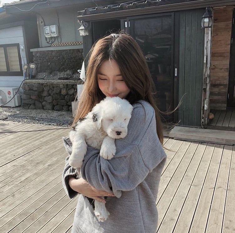 9 kiểu gia đình dị biệt Hàn Quốc: Một vợ một chồng, không có con cho đến người và... cái cây - Ảnh 4.