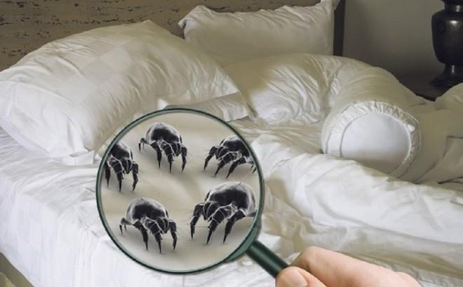 Thói quen vô cùng xấu mà nhiều người thường làm trên giường vô tình gây ra hàng loạt tác hại - Ảnh 3.