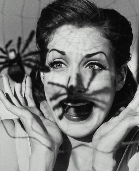Sợ tái mào vì nhìn thấy nhện, người phụ nữ thẳng tay đốt nhà rồi bị bắt - Ảnh 3.