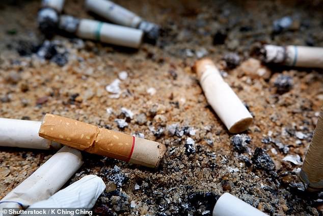 Cây cỏ trên thế giới đang chết dần chết mòn vì 4,5 NGHÌN TỈ đầu lọc thuốc lá xuất hiện mỗi năm - Ảnh 2.