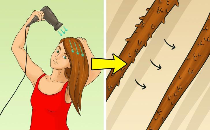 12 lỗi sai điển hình khi dùng máy sấy ảnh hưởng nghiêm trọng tới mái tóc, khiến tóc ngày càng khô rối, hư tổn - Ảnh 2.