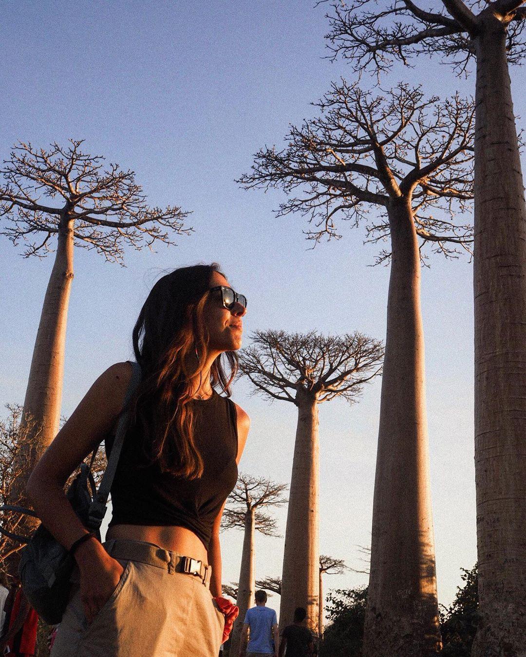 Dính phải lời nguyền phải mọc ngược, rừng cây ở Madagascar nay lại trở thành điểm check-in xịn xò của giới blogger du lịch - Ảnh 10.
