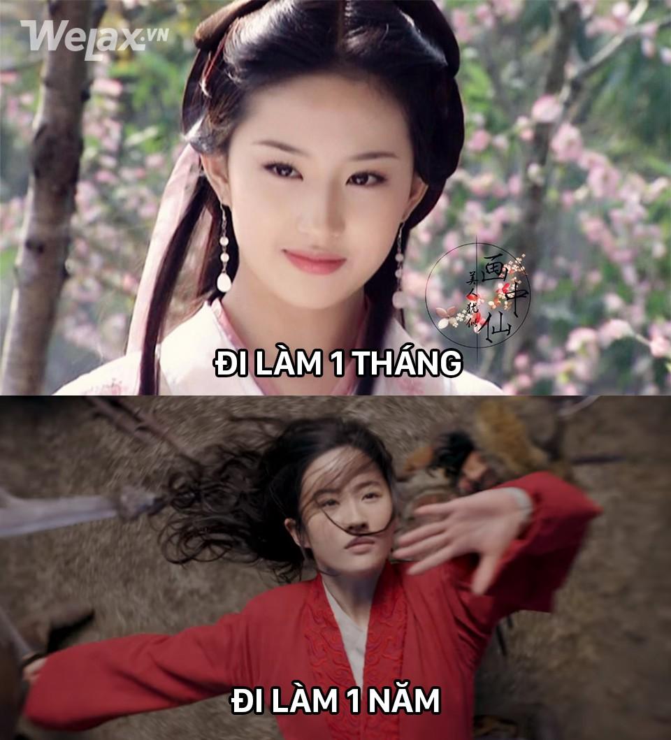 Đơ y chang biểu cảm cô Tấm ngã cây của Hạ Vi đã đành, Lưu Diệc Phi trong Mulan còn tặng khán giả nhiều meme hơn thế - Ảnh 6.