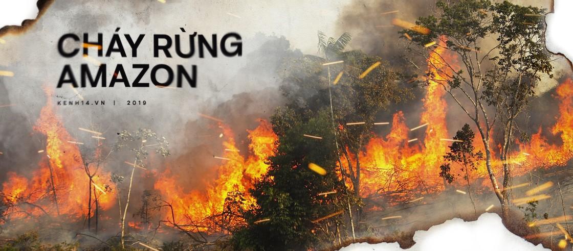 Cháy rừng Amazon