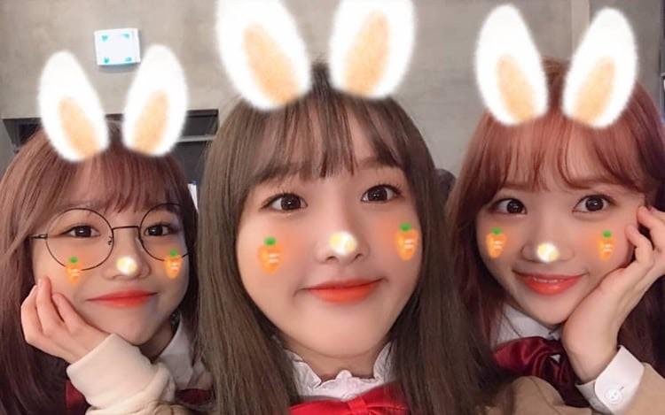 VZN News: Các nhóm nhạc Kpop có thành viên giống nhau đến khó tin: Yoona và Yuri còn chưa gây sốc bằng bộ đôi SEVENTEEN - Ảnh 7.