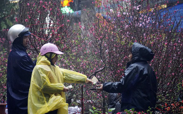Thời tiết Tết Nguyên đán Canh Tý 2020: Gió mùa tràn về đúng đêm giao thừa, miền Bắc rét đậm vào ngày mùng 2