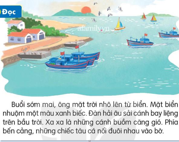 Sau Cánh Diều, thêm một bộ sách tiếng Việt lớp 1 bị nhận xét không tôn trọng bản quyền, kiến thức khó và nhiều bài học có chi tiết sai thực tế - ảnh 5