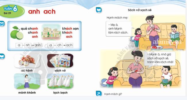 Thêm hai bộ sách tiếng Việt bị phụ huynh tìm ra lỗi sai kiến thức cơ bản: Sở thú chỉ có ngan, gà và anh chó vàng đua xe đạp? - ảnh 3