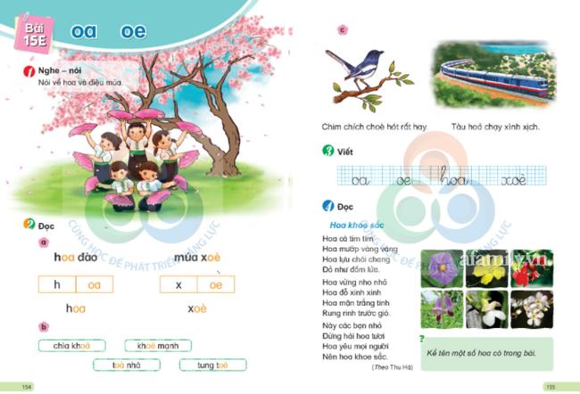 Thêm hai bộ sách tiếng Việt bị phụ huynh tìm ra lỗi sai kiến thức cơ bản: Sở thú chỉ có ngan, gà và anh chó vàng đua xe đạp? - ảnh 6