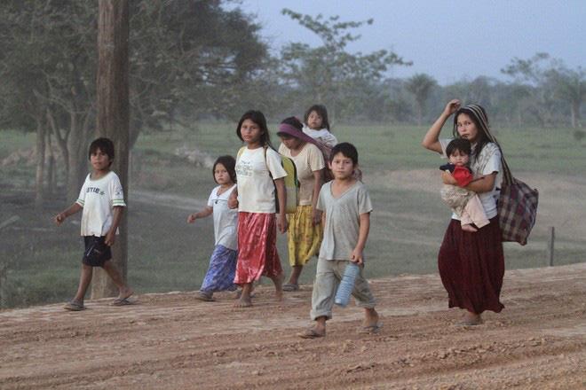 Sau 16 năm hòa nhập với xã hội văn minh, thân nhiệt của thổ dân Amazon giảm 0,5 độ C - ảnh 2