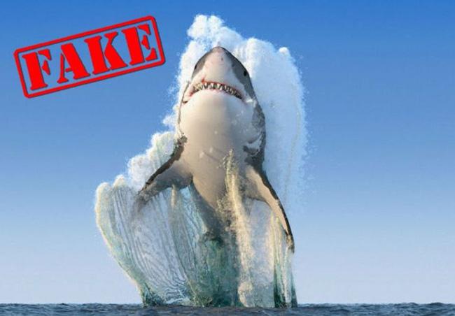 Bức ảnh cá mập nhảy lên khỏi mặt nước sắp ngoạm người đàn ông sau 19 năm vẫn khiến dân mạng thót tim và tò mò về số phận nạn nhân - ảnh 7