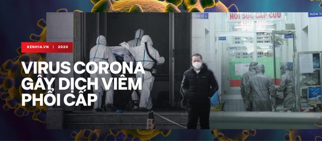 Virus corona gây dịch viêm phổi cấp
