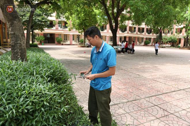 """Sau nỗi kinh hoàng """"cây đổ trong trường học"""": Các trường quản lý cây xanh ra sao? - ảnh 8"""